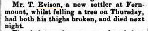 From the Armidale Express and New England General Advertiser - Friday 23 July 1880